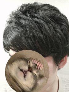 ジョバンニ マグネティックワックススタイリング例
